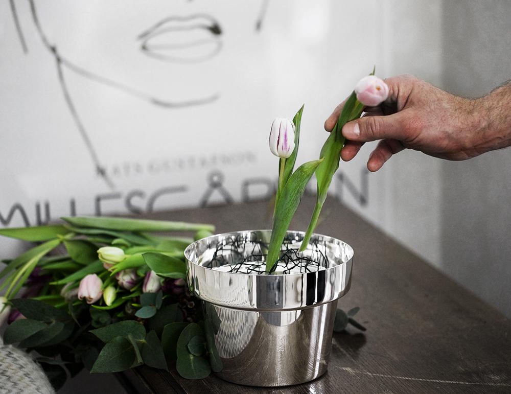 älskade tulpaner