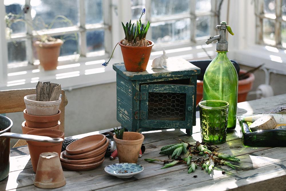 Vårstädning och vårplantering i växthuset