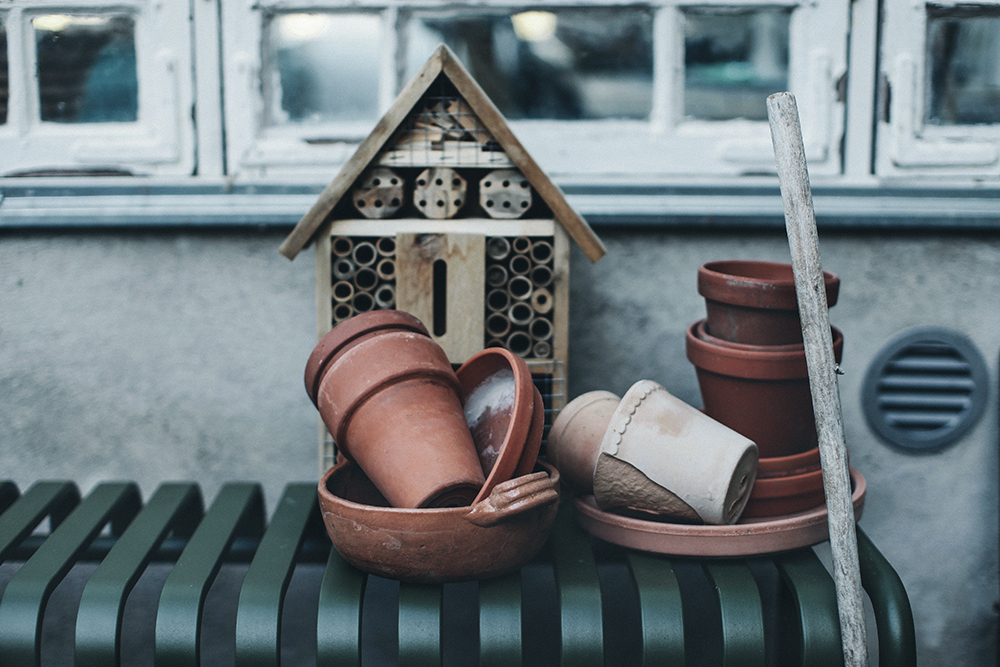 trädgårdsliv