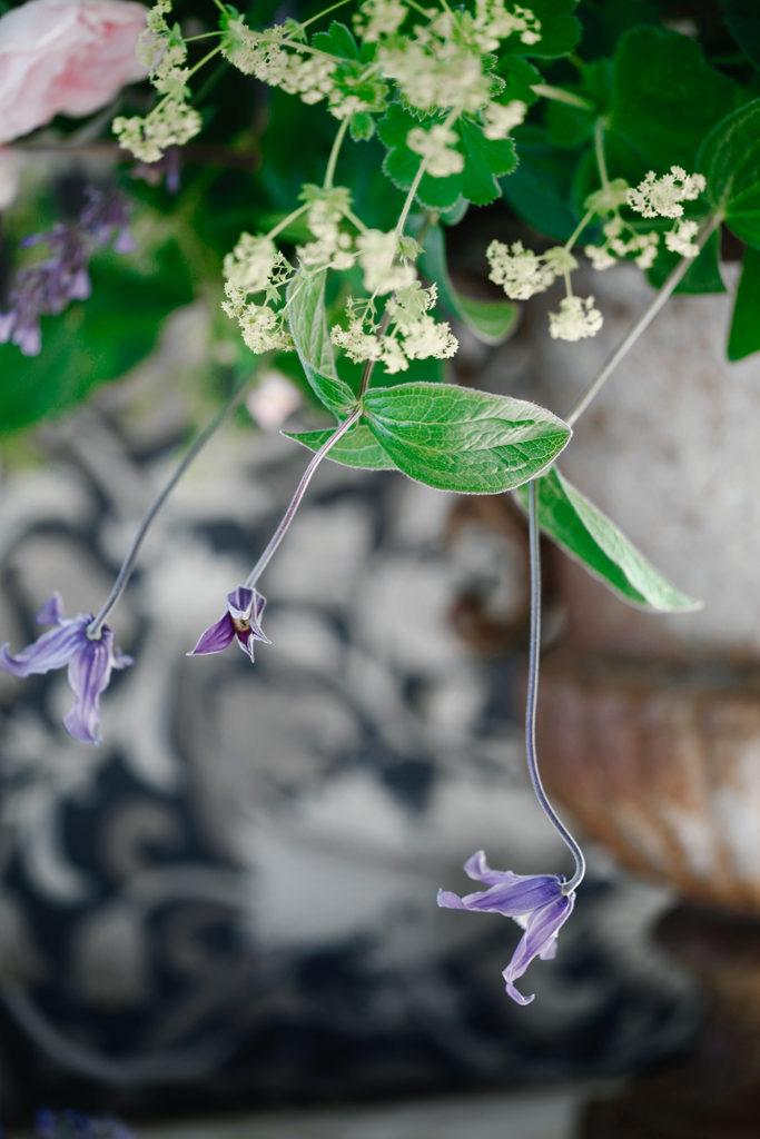 trädgårdsliv, blommor