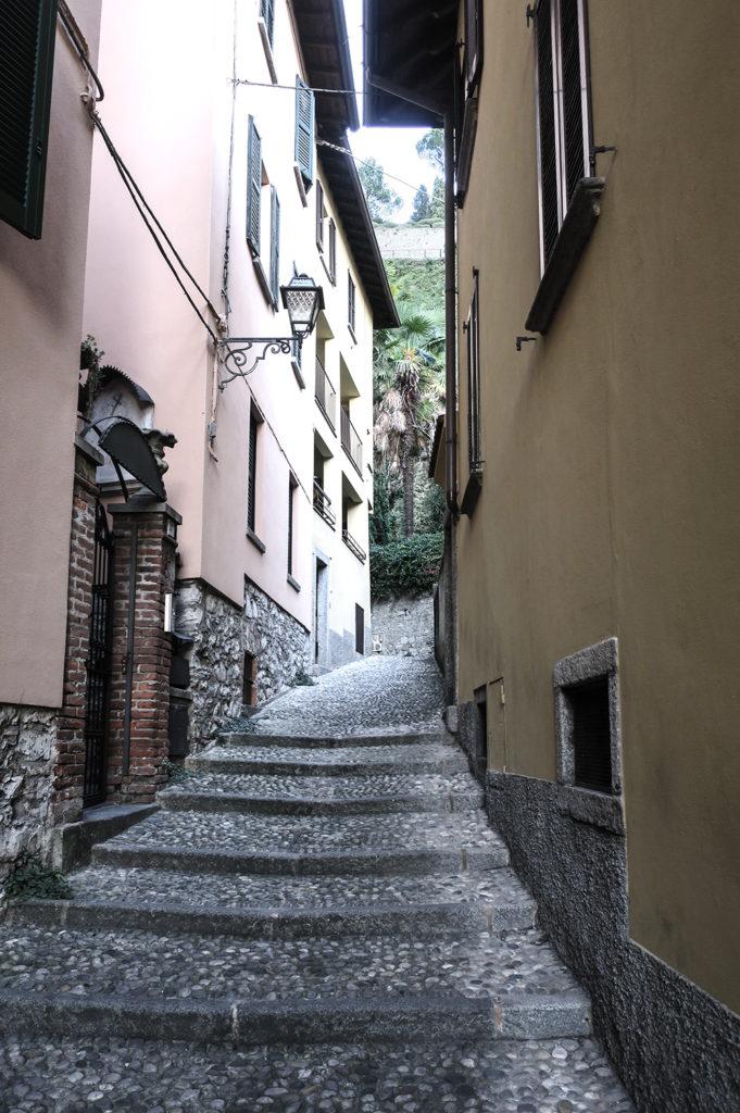 bilresa i Italien med hund