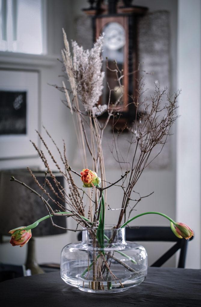 Torkade växter